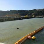 OKシルトフェンス:復旧工事時汚濁拡散防止(海洋)