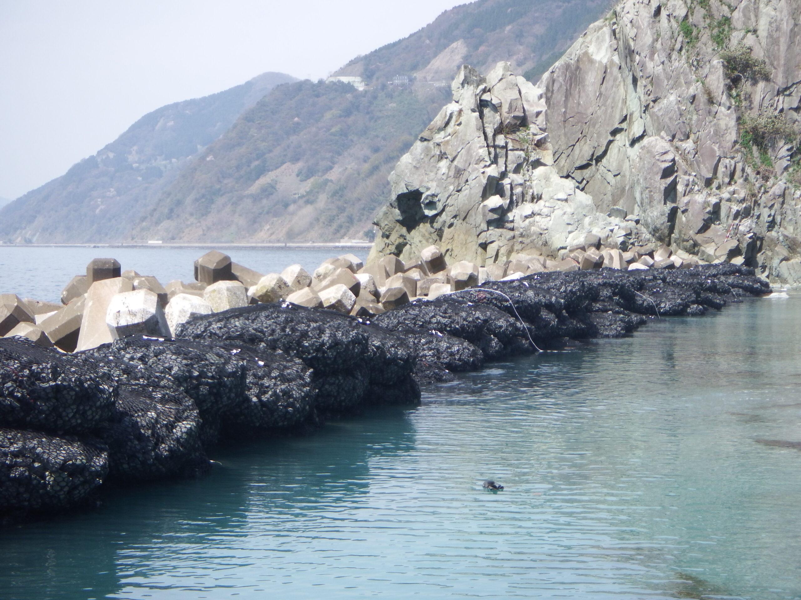 パワフルユニット:応急復旧(海洋/福井)